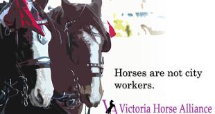 victoria carriage tours