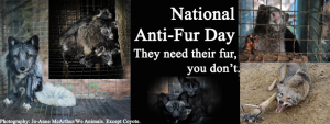 National anti fur day
