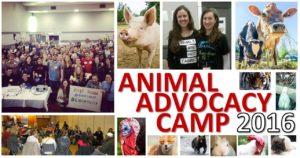 Animal Advocacy Camp