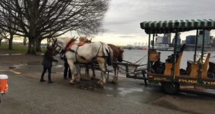 Vancouver Horse Trolley